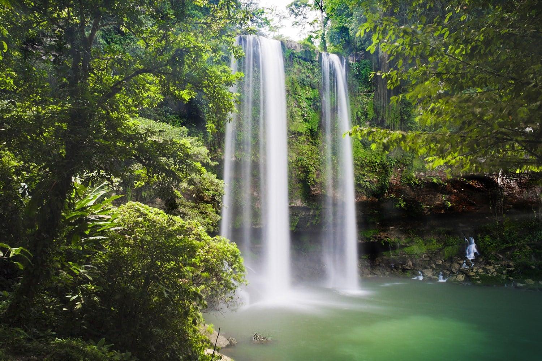 Vue de la cascade de Misol Ha de face