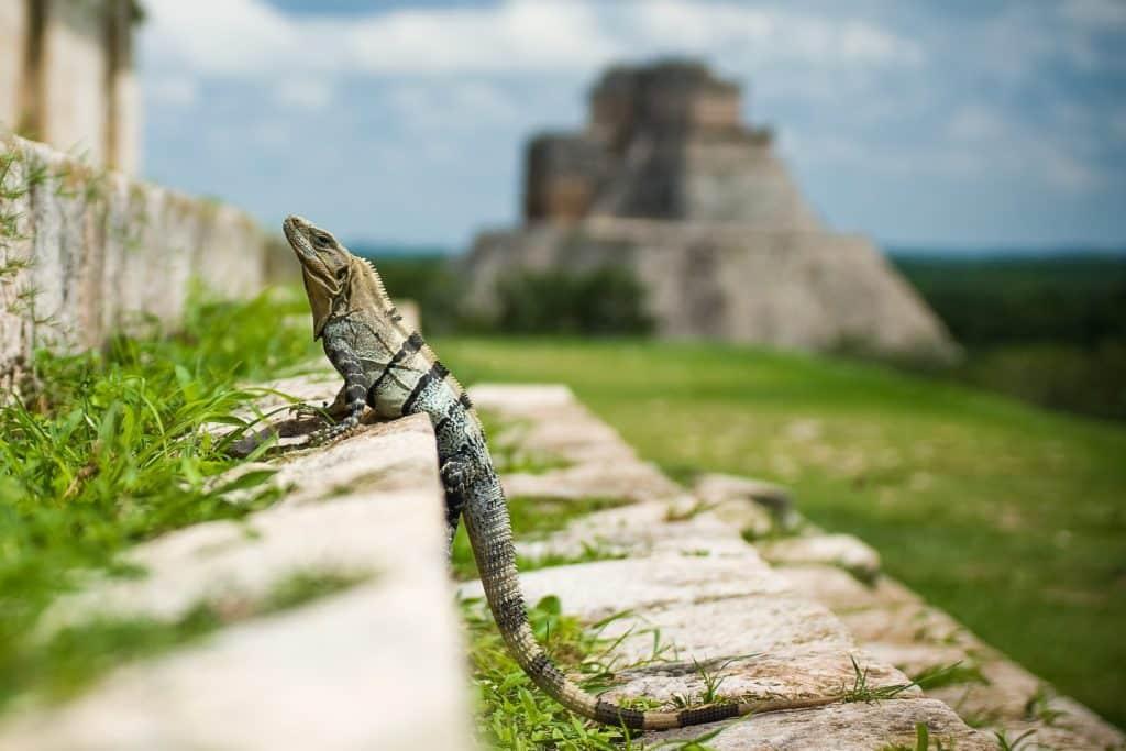 Pyramides du Mexique